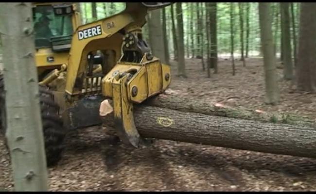 Klemskidder uitslepen langhout