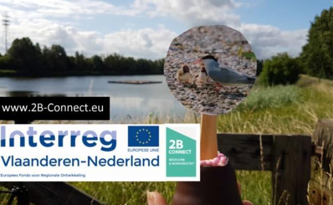 Visdiefeiland_DOW Benelux