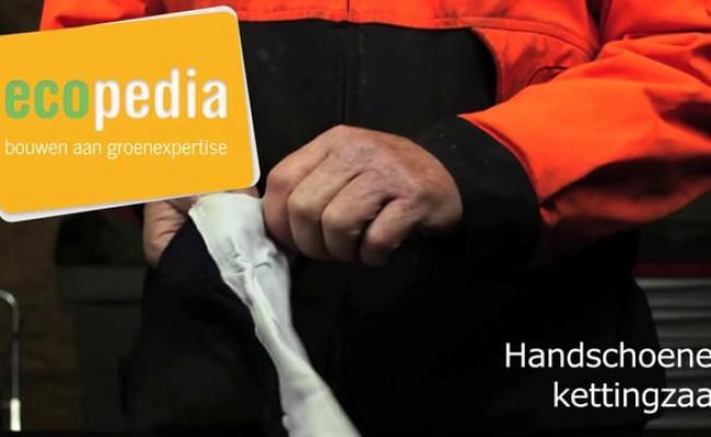 Handschoenen kettingzaag